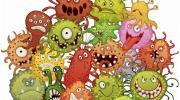 Вирусы и бактерии: отличия, строение и роль
