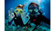 Дайвинг и подводная охота: что нужно знать новичку о снаряжении