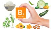 Витамин В2 (рибофлавин): содержание в продуктах и польза